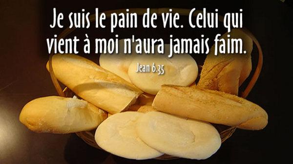 Telle est la volonté de mon Père : que celui qui voit le Fils et croit en lui ait la vie éternelle  dans Catéchèse